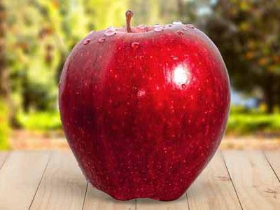 Roter Apfel im Garten