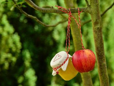Apfel und Marmelade am Baum