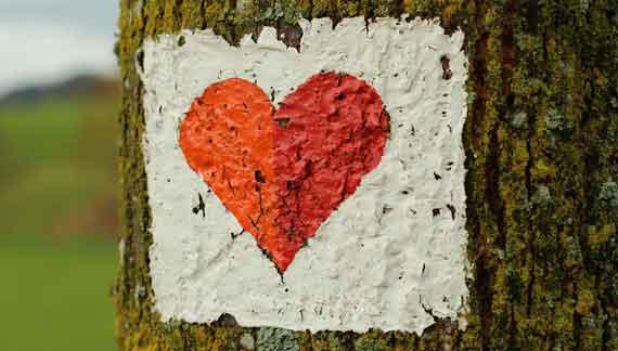 Gemaltes Herz auf Eiche